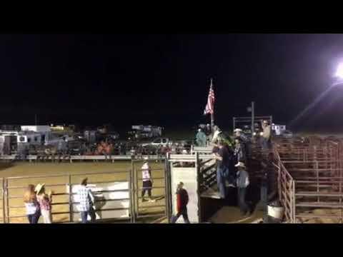 Jackson County Wv Fair Rodeo