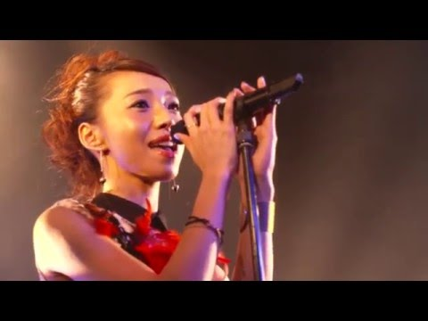 Faint⋆Star - white | Faint⋆Star LIVE ! at Tokyo Sound Collection Fes. 20151222
