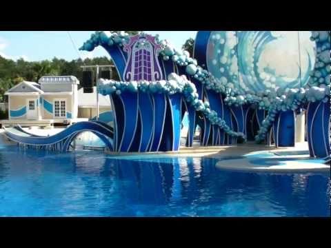 Blue Horizons @ SeaWorld Orlando (Full Show) HD