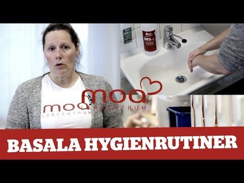 basal hygien utbildning