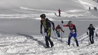 ADAMELLO  SKIRAID JUNIOR  2018