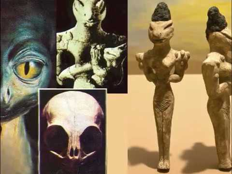 Reptilians | TALL WHITE ALIENS