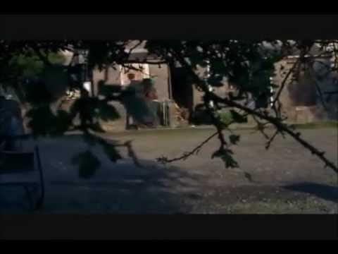 Torchwood  Gwen gets shot