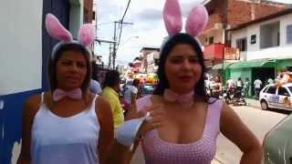 Baixar Domingo de Páscoa - Amigo Solidário.