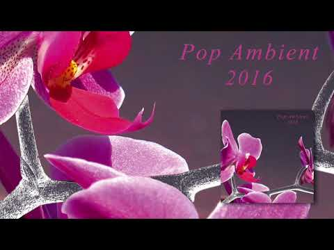 Max Würden - Unterwasser 'Pop Ambient 2016' Album