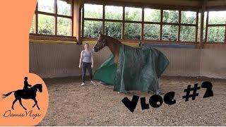 Gambar cover Vlog #3 - Fußballspiel & Gelassenheitstraining