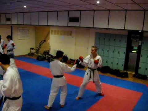karate Ashi do te