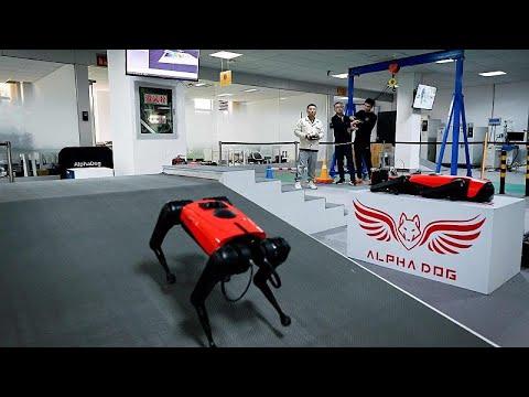 شاهد: شركة صينية للتكنولوجيا تطور كلابا ألية للحراسة والتنزه…  - 10:58-2021 / 4 / 9