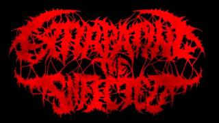 Extirpating The Infected - Blood Dinner