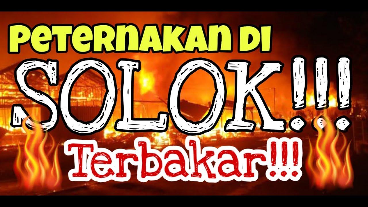 PETERNAKAN DI SOLOK TERBAKAR!!! WARGA GOTONG ROYONG PADAMKAN API
