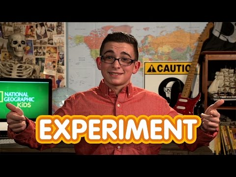 Water Experiments | Nat Geo Kids Cool Science Experiments Playlist