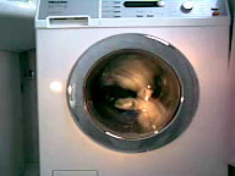 Lavatrice miele durante il lavaggio 2 youtube for Lavatrice si blocca durante il lavaggio