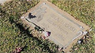 TheDailyWoo - 937 (1/24/15) Dracula : Bela Lugosi Grave