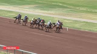Vidéo de la course PMU PRIX DE VENACO