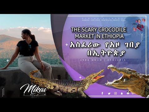 The scary crocodile market in Ethiopia | አጅግ አደገኛ እና አስፈሪው የአዞ ገበያ በኢትዮጵያ(HD Documentary 2021)