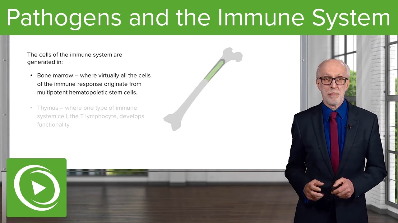 Pathogens and the Immune System: Introduction – Immunology | Lecturio