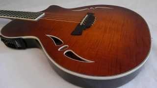 Guitar Demo - Crafter SAC TMVS (Part 1 of 2) - StringTown