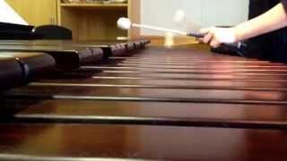 SAKEROCKの「会社員」という曲を一部抜粋してマリンバで弾いてみました...