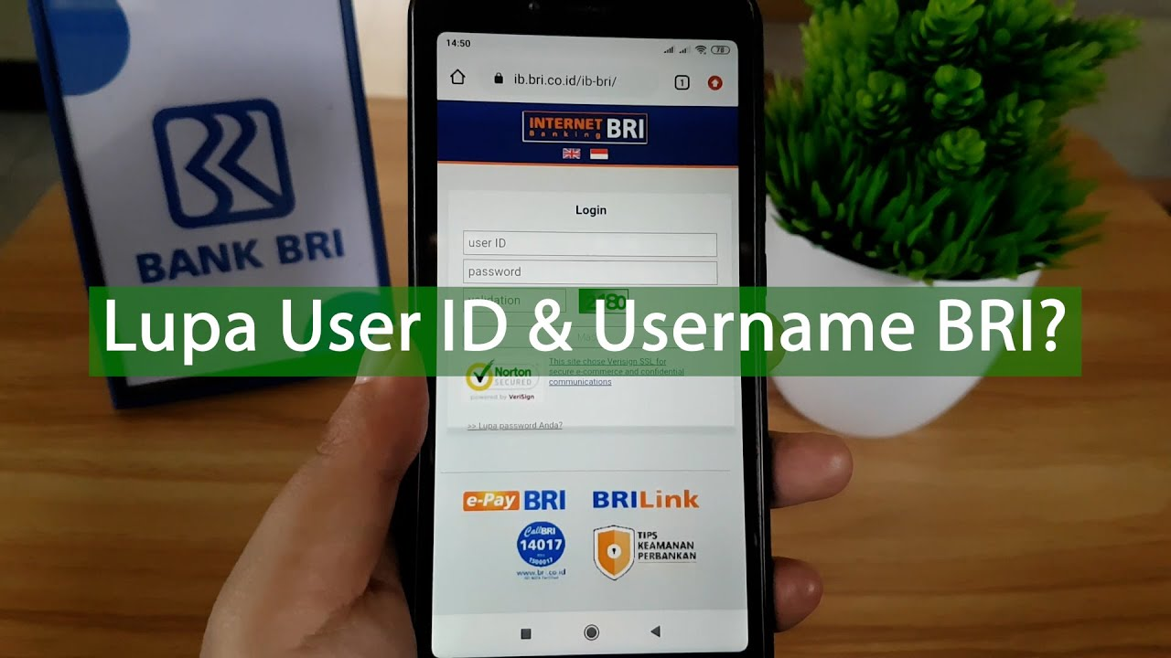 Cara Mengetahui User Id Bri Internet Banking Username Brimo Youtube