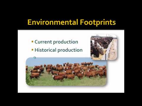 Measuring the Environmental Hoofprint of Dairy and Beef Production Systems