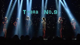 티아라 (T-ara) - 넘버나인 (No.9) , 2013 /Stage mix
