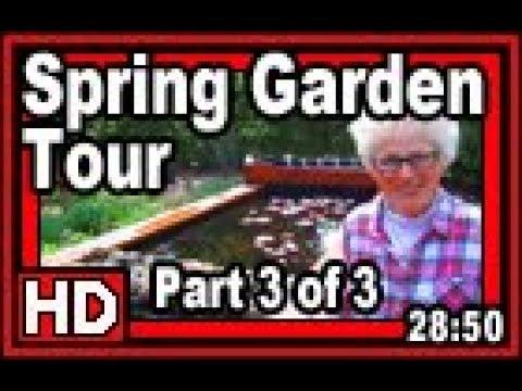 Spring Garden Tour Part 3 of 3 - Wisconsin Garden Video Blog 829