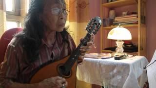 LOVE  STORY- Nhạc  nước ngoài - Mandolin Việt Dung