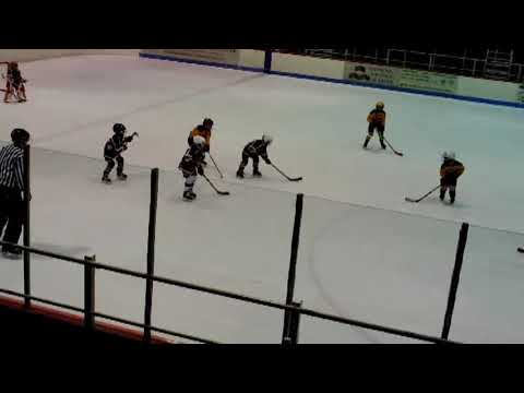 Plattsburgh - Canton & Watertown Mites  2-2-19