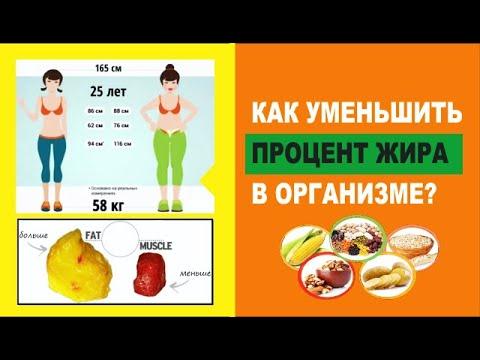 Как уменьшить жир в организме