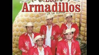 SE PARTIÓ MI CORAZÓN LOS ARMADILLOS DE LA SIERRA