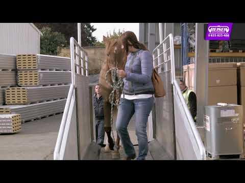 Le tapis de course électrique pour chevaux testé par Roger et Malik