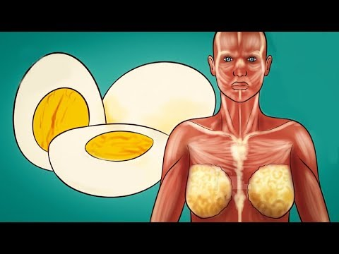 Eat 2 Eggs At Breakfast For 30 Days And This Will Happen To Your Body