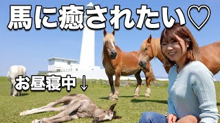 148cm低身長女子と大自然デート!馬の赤ちゃんに癒される旅♡