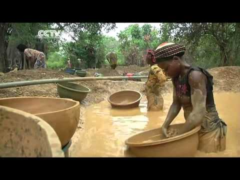 Gold Metal Displaces Cocoa Plant in Ghana and Cote d'Ivoire.