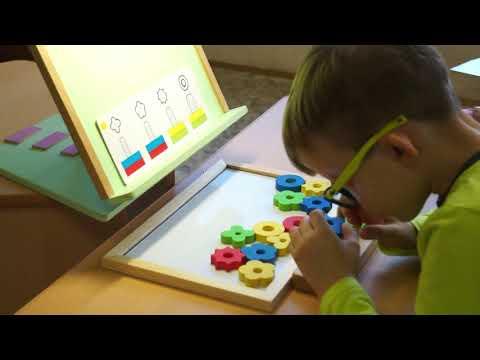 Мастер-класс по обследованию на ПМПК детей с нарушением зрения