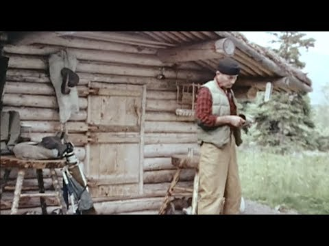 Cabin Alone in the Alaskan Wilderness  - Dick Proenneke