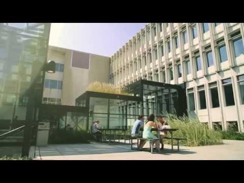 Vie étudiante en résidence à l'Université Laval