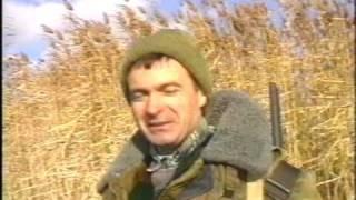 Охота с подсадными на перелетах. Днепровский лиман