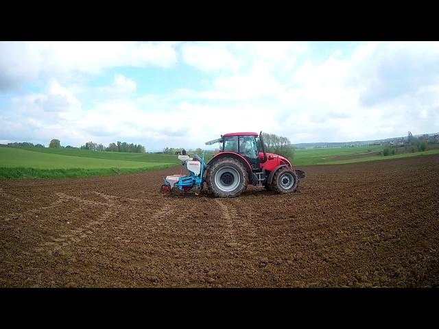 Wiosna 2017*Wtopa?! Siew kukurydzy&Zetor Forterra 12441&Ursus c-360 3P&Case Farmall 105u&Monosem