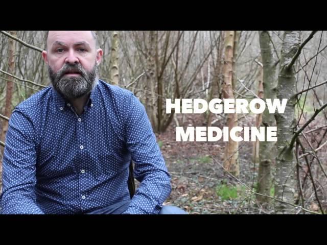 Nettle health benefits   Herbal Medicine