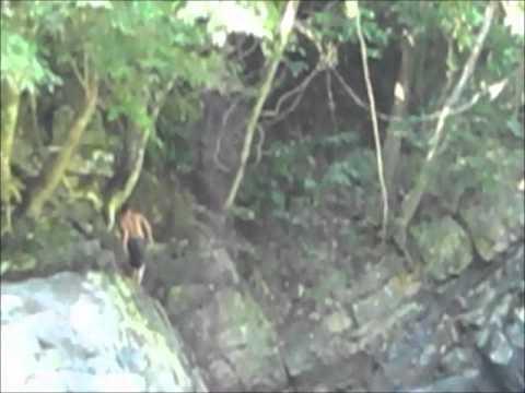 Tablas Island Malbaran Waterfall Romblon