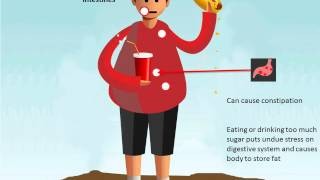 How An Unhealthy Diet Affects Your Body