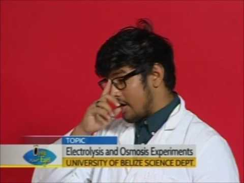 University of Belize Science Department - Student Experiments