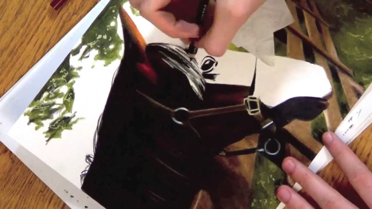 realistic colored pencil drawing of a horse youtube