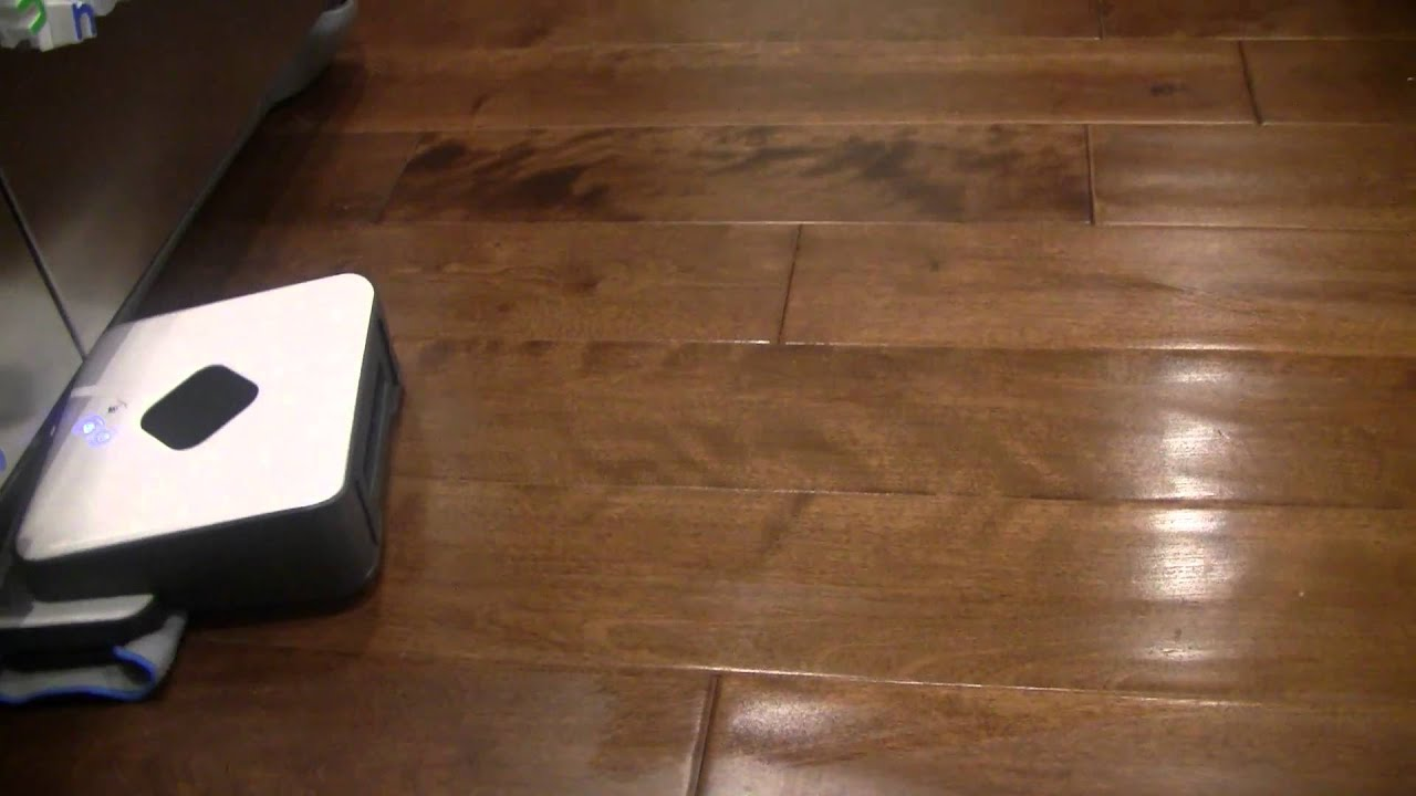 Mint Automatic Robot Floor Cleaner