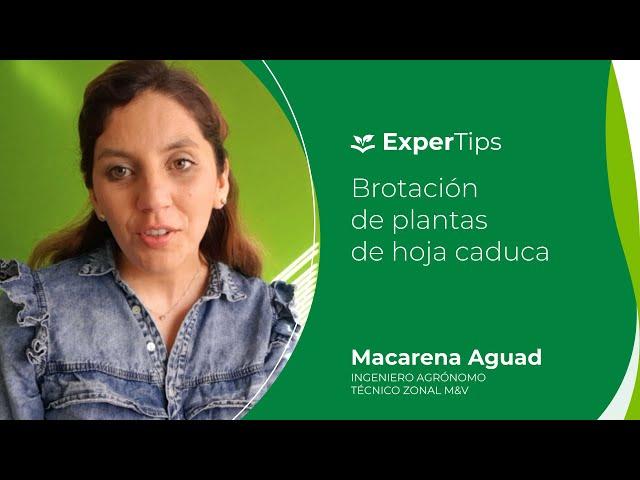 Expertips Brotación en plantas de hojas caducas