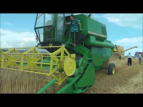 Vintage combine harvesters working