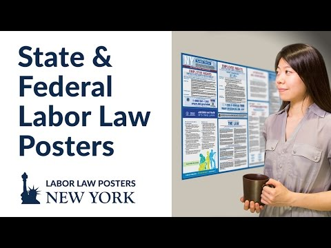 New York State and Federal Labor Law Poster Video