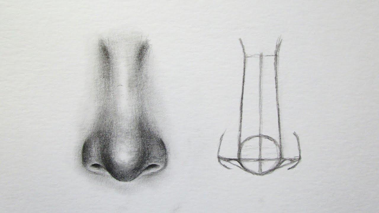 Cara Menggambar Wajah Untuk Pemula How To Draw A Face Youtube