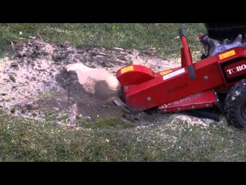 Home Depot stump grinder